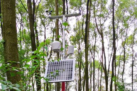 森林火险气象站