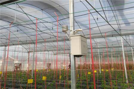 安康大棚种植使用环境湿度记录仪