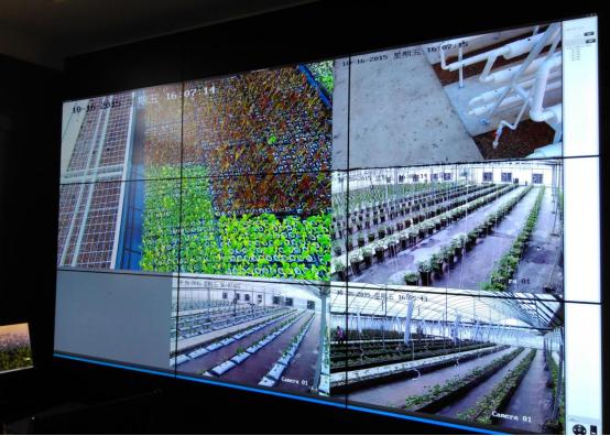 智能温室大棚控制系统