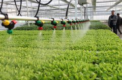 规划农田节水水肥一体化方案流程