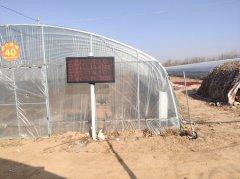 商丘睢县4800平大棚,安装托莱斯智能温室系统